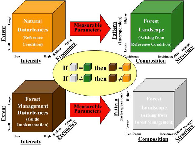 Predicted relationships between pattern, composition, and structure and forest management disturbances versus natural disturbances.