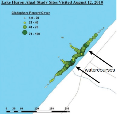 A map of Cladophora per cent cover at Lake Huron algal study sites visited on August 12, 2010.