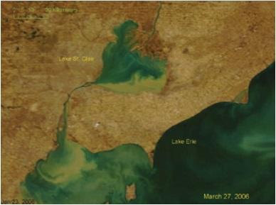 A Landstat-5 satellite image showing algal blooms extending into Lake Erie's western basin on September 12, 2009.
