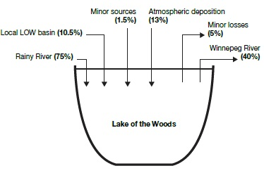 A graphic that shows in percentages the primary sources and losses of total phosphorus to Lake of the Woods.
