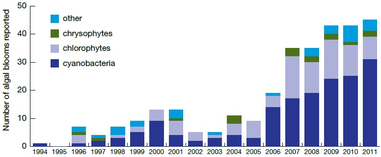 A graph that shows the number of algal blooms reported to the Ontario Ministry of the Environmen and Climate Changet between the years 1994 and 2011.