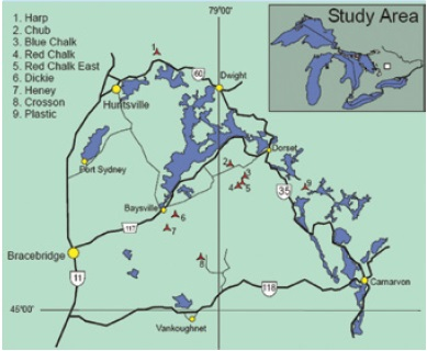 A map showing the Dorset area study lakes in Ontario.