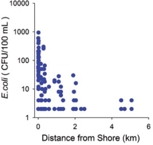 A graph with the levels of escherichia coli plotted against the distance from the shoreline of Lake Ontario in the Town of Ajax area (east of Toronto), (modified from Howell and others, 2012, footnote reference 44).