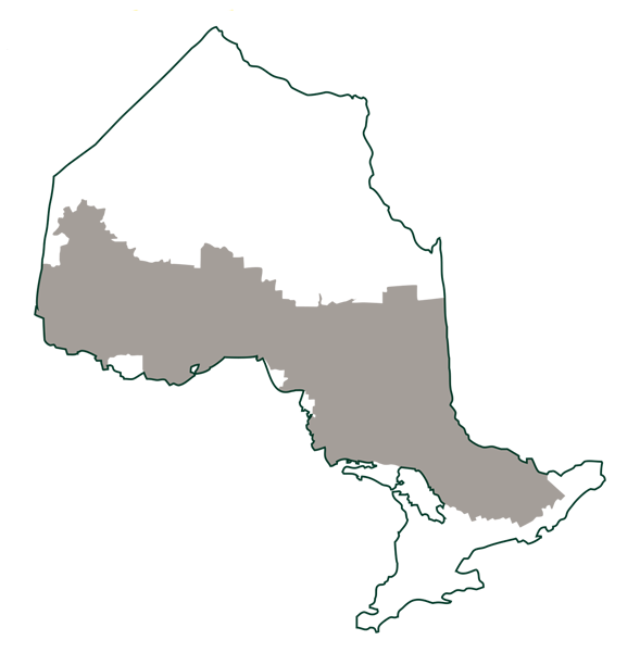 Map of the area of Ontario where forests are managed on Crown land