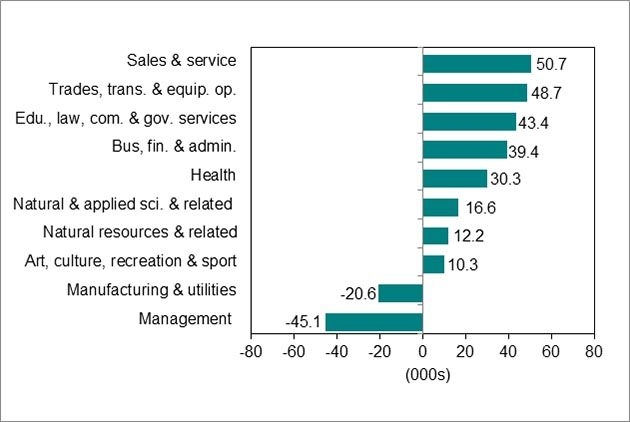 Bar graph, chart 5