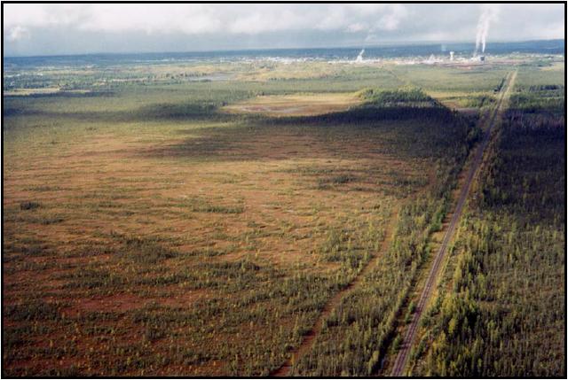 Nahma Bog and Poor Fens Conservation Reserve Management