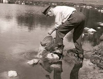 Fish management history | Ontario ca