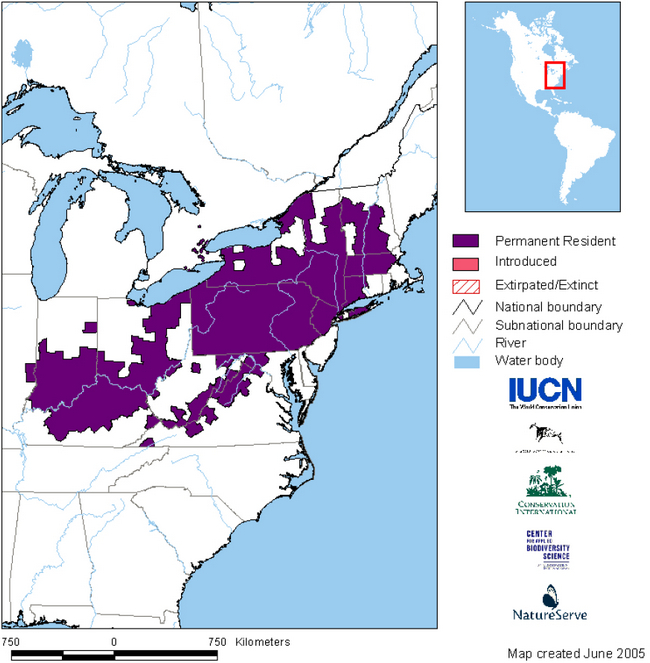 This is a map showing the global range for the Jefferson Salamander. Permanent resident areas are shaded in purple. Intriduced areas are shaded in pink. Extirpated and extinct areas are shaded with pink diagonal lines. (NatureServe 2005)
