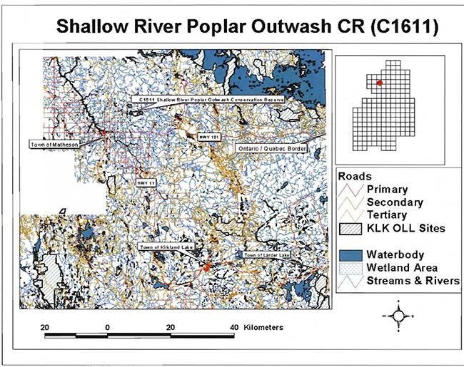 Shallow River Poplar Outwash Conservation Reserve Management
