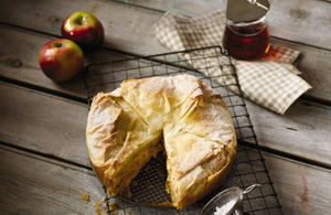 This is a photo of apple and cheddar strudel. The strudel is on a grade, with apples near the top of the image, and a folded plaid napkin, all resting on a picnic table.