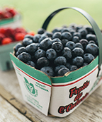 Foodland basket of blueberries