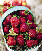 Foodland basket with strawberries