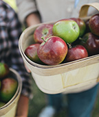 Wooden basket of apples with two people in the background