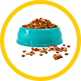 image of pet food in a dish.