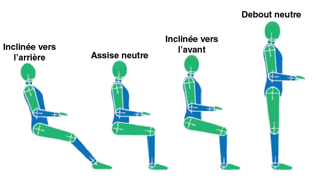 La figure1 montre quatre postures de travail différentes pour le travail à l'ordinateur, c'est-à-dire inclinée vers l'arrière, droite, inclinée vers l'avant et debout