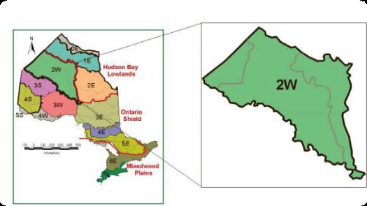 The Ecosystems Of Ontario Part 1 Ecozones And Ecoregions