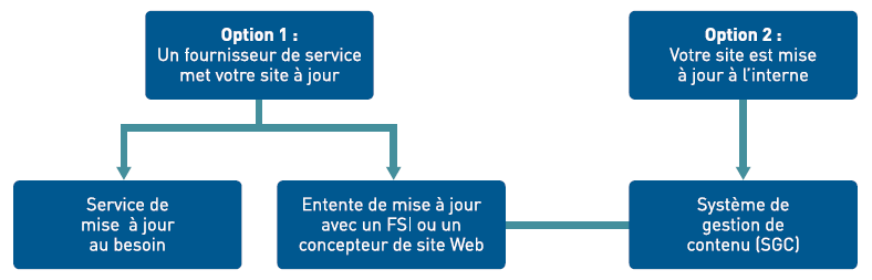 Figure 2 - Options pour la mise à jour de votre site web
