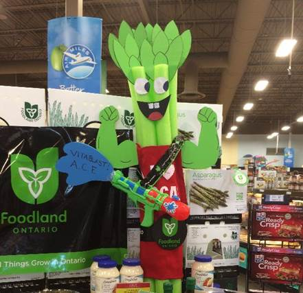A Sobeys retail display featuring a cartoon Ontario asparagus made of cardboard, the Foodland Ontario flag and images of Ontario asparagus.