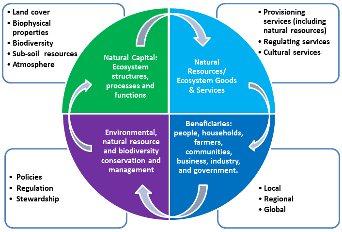 natural capital and ecosystem services ontario ca