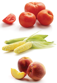 tomatoes, corn and peaches