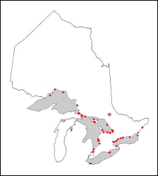 Range of the chinook salmon in Ontario