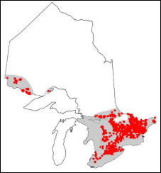 Range of the Largemouth Bass in Ontario