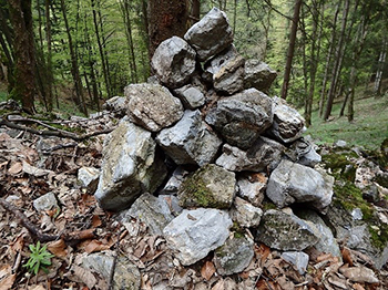 A photo of a pile of rocks in a wooded area. This rock pile could provide habitat for a variety of wildlife.