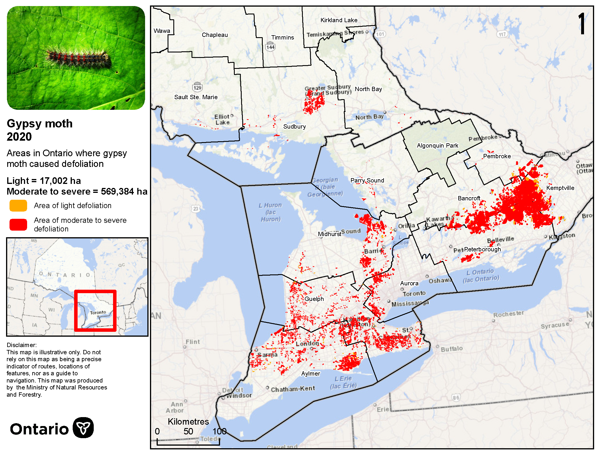 Map of northeast and southern Ontario, showing gypsy moth defoliation areas northwest of Sudbury, along the north shore of Lake Huron, and across much of southern Ontario.