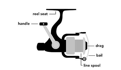 Image of a fishing reel