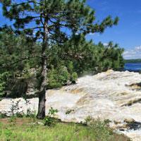 Photo panoramique d'une rive boisée, dans l'une des nombreuses régions naturelles de l'Ontario. (Photo : ministère du Développement du Nord, des Mines, des Richesses naturelles et des Forêts)