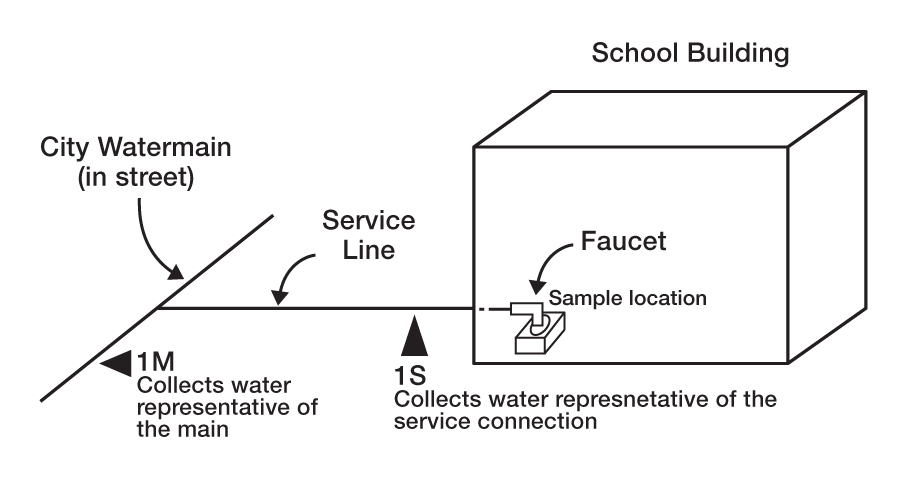 The image depicts a one-storey school building that is connected to the city's mainline by a branch line. This pipe enters the school building to supply a tap. The image shows 2 sampling locations. The first (1 m) is located on the city main line downstream of the branch line. The second sampling location (1 s) is located on the branch line before entering the building. On the other hand, the tap located inside the building is indicated as another sampling location.