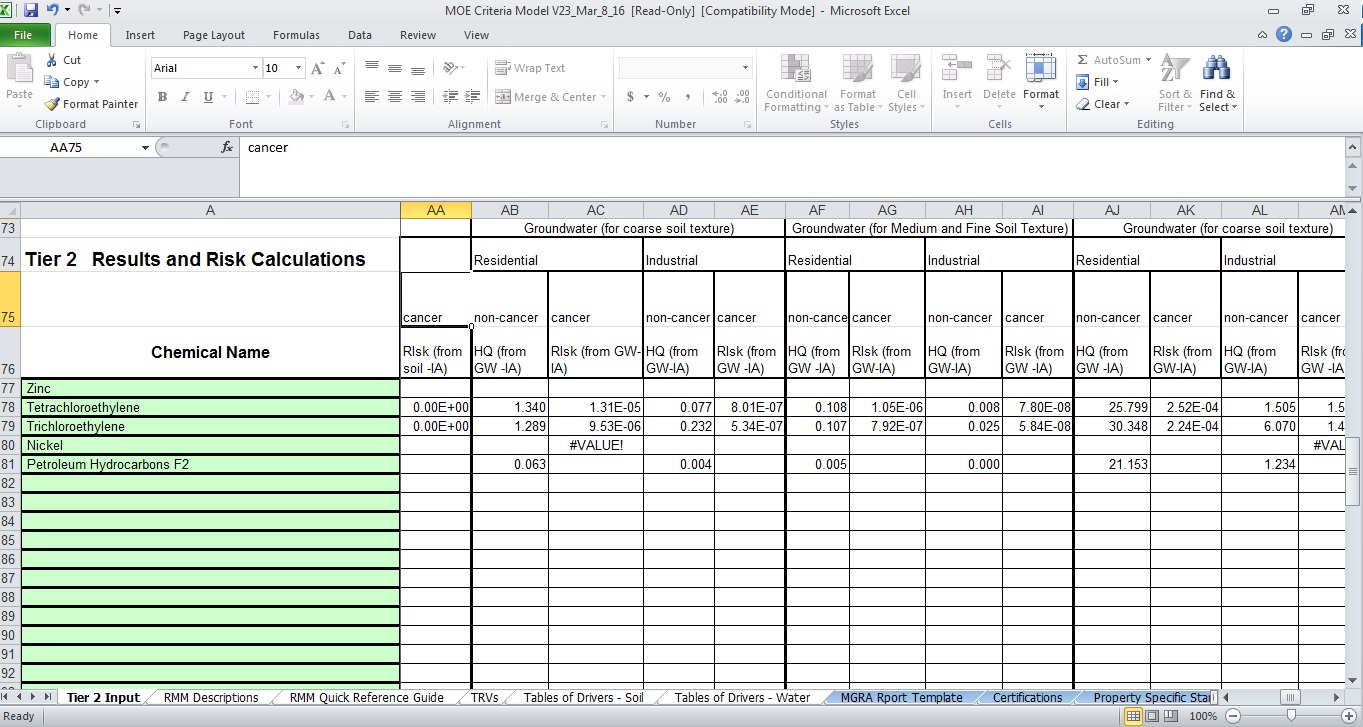 Model screenshot of the Tier 2 Input page showing the risk calculations.