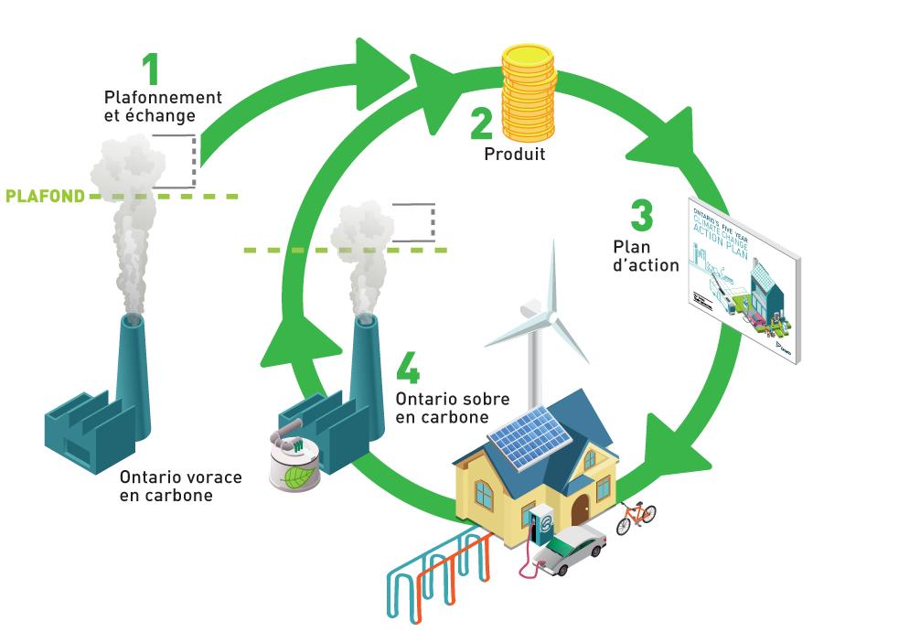 Cette image illustre la boucle de rétroaction positive entre le programme de plafonnement et d'échange et le plan d'action contre le changement climatique. Lorsque le programme de plafonnement et d'échange entrera en vigueur, la vente aux enchères des droits d'émission générera des produits qui financeront les initiatives en vue de réduire les gaz à effet de serre. Le plan d'action précise les initiatives à financer. Ces initiatives aideront la transition vers un Ontario sobre en carbone. À mesure que le plafond des émissions sera réduit, des produits continueront d'être générés afin de financer de futures initiatives du plan d'action, qui réduiront encore davantage les émissions.