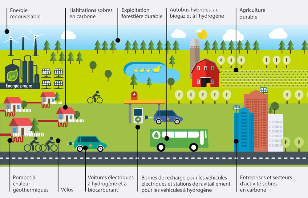 Le graphique ci-dessous illustre ce que signifierait un avenir sobre en carbone pour l'Ontario en 2050, avec de l'énergie renouvelable, des maisons sobres en carbone, une foresterie durable, une agriculture durable, des thermopompes géothermiques, des vélos, des voitures électriques, à hydrogène et à biocarburant, des bornes de recharge électrique et de ravitaillement en hydrogène, des autobus hybride à biogaz et hydrogène, ainsi que des entreprises et des industries sobres en carbone.