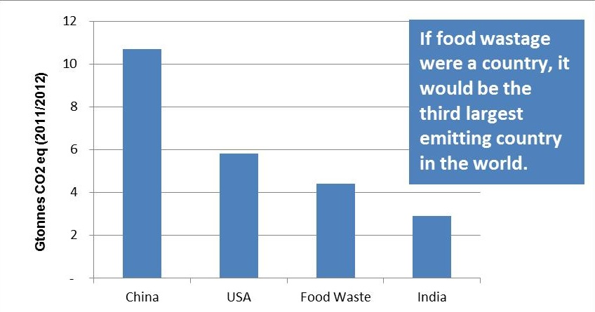 food wastage in india essay