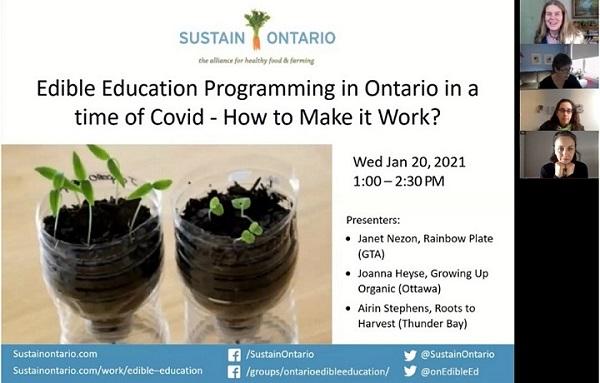 Image d'un webinaire tenu par Sustain Ontario discutant du sujet « Edible Education Programming in the Time of COVID – How to Make it Work? ». Mise en garde : Le webinaire de Sustain Ontario était uniquement offert en anglais.