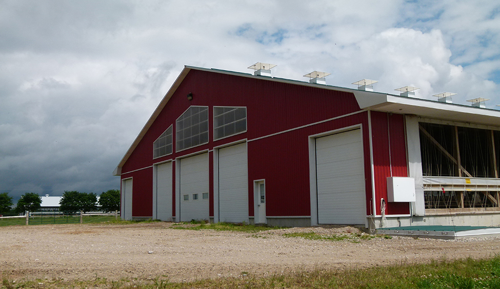 front end of a naturally ventilated dairy barn with side wall curtain up