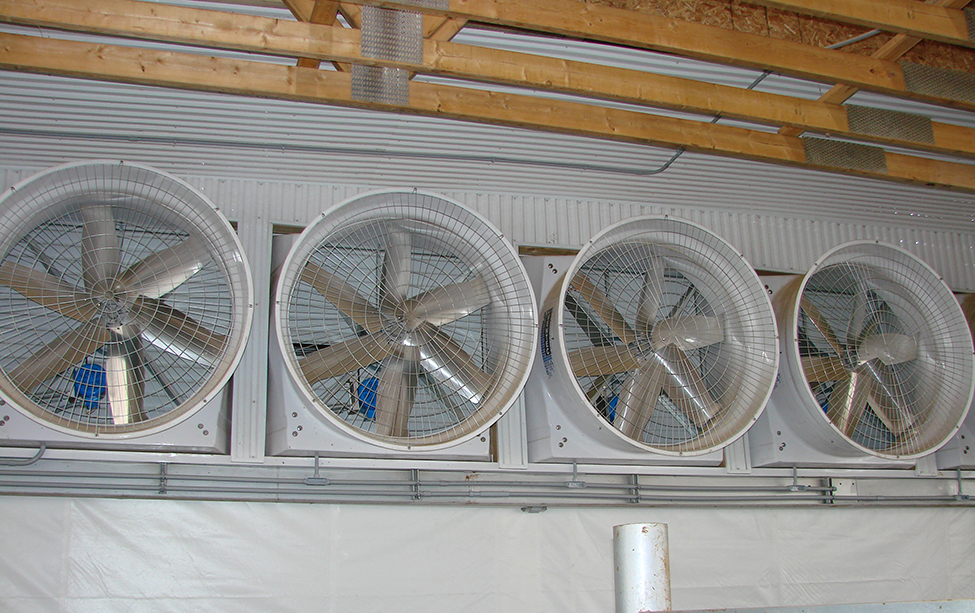 Dairy housing - ventilation options for free stall barns ...