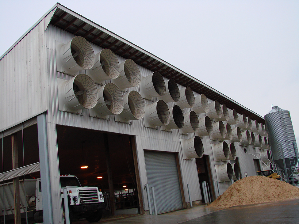 outside of a dairy barn showing barn wall covered with fans