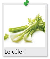 Le c leri ontario terre nourrici re - Que faire avec les feuilles de celeri ...