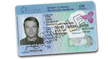 Ontario offers online drivers license renewal