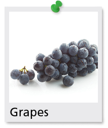 himrod mature singles Grasee-z-himrod usda zones 5 - 8  grape vines have be released to nurseries by usda researchers some cultivars producing as 100 pounds of grapes on a single vine muscadine grape vines.