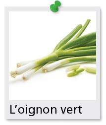 oignons verts
