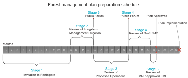 10-year forest management plan schedule