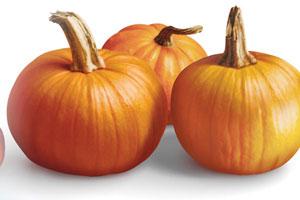 Pumpkin Sour Cream Cheesecake