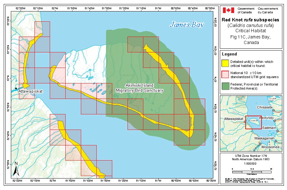 Map Of Canada James Bay.Red Knot Rufa Subspecies Recovery Strategy Ontario Ca