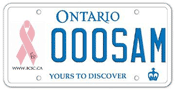 Illustration of licence plate - Breast Cancer Society of Canada