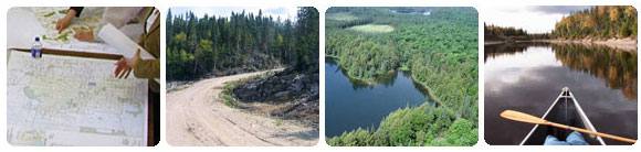 Forest plans, forest views, canoe on lake