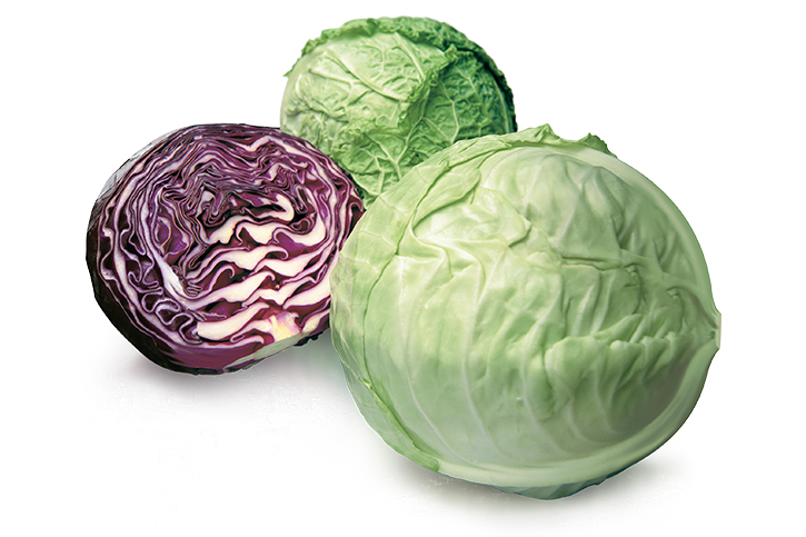 Image of Ontario Cabbage