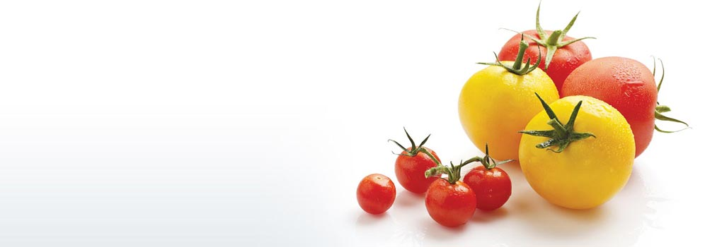 roasted garlic and tomato soup foodland ontario